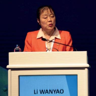 Prof. Dr. Li Wanyao